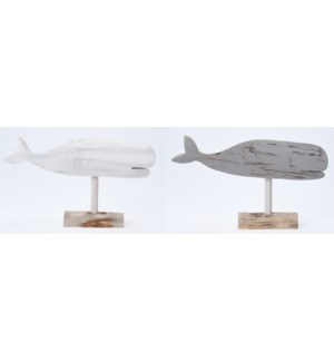 YZT900030-Beacmbr Whale