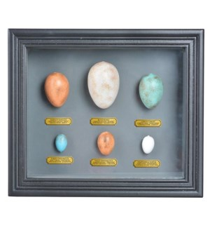 Egg collection in frame. Glass, MDF, PS. 32,0x7,9x27,5cm. oq/6,mc/12 Pg.105