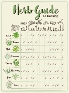 Guide to cooking with herbs. 0. 30,1x0,1x40,1cm. oq/12,mc/60 Pg.145