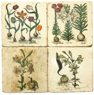 Mixed Botanical Tulip Series Set/4, Marble Coasters 4x4 in