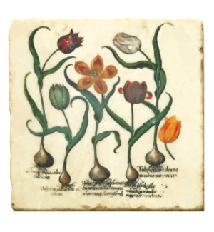 """Mixed Bulb Botanical Set/4, Marble Coasters 4x4 in"""