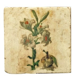 """Mixed Botanical Lily Sprout Set/4, Marble Coasters 4x4 in"""