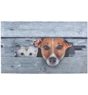 Doormat Peek-a-boo! Dog & cat