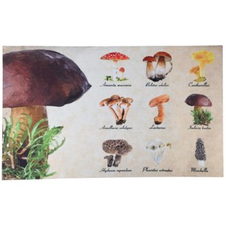 Doormat collectibles mushrooms, Polyester, PVC - 29.5x17.9x0.1in.