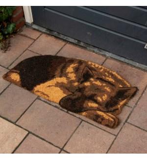 Coir doormat sleeping guard dog