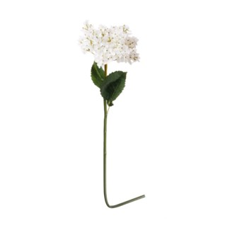 French Hydrangea White, 9x6x34 Inches