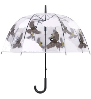 Transparent umbrella 2 sided birds -  31.8x31.8x31.9in.