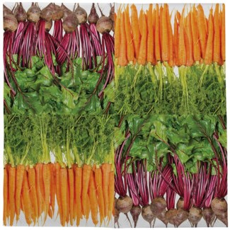 Paper napkins vegetables 33x33cm - 6.75x6.75x1.25 inches