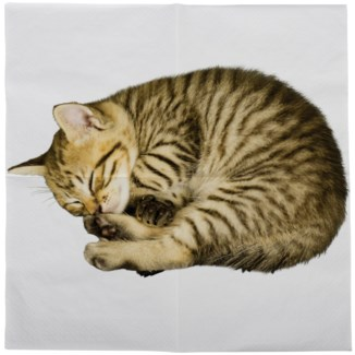 Paper napkins cat 33x33cm - 6.75x6.75x1.25 inches