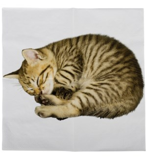 Paper napkins cat 33x33cm - 6.75x6.75x1.25 inches