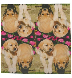 Paper napkins dogs 33x33cm, Tissue paper (3 ply) - 6.5x6.5x0.9in.