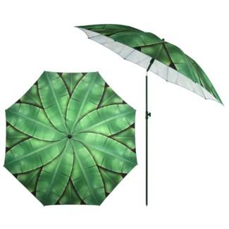 Parasol banana leaves