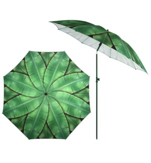 Parasol banana leaves