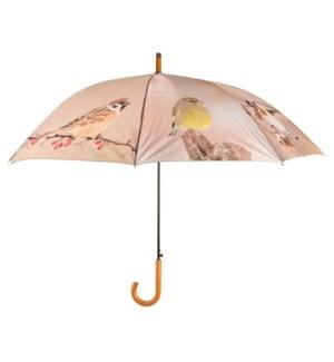 Umbrella autumn birds