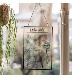 Glass hanger kitchen herbs