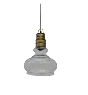 Glass Parrot Pendant Light 11x11x15in.