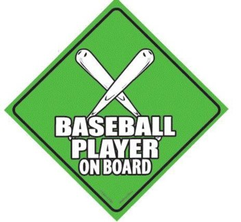 Baseball Player on Board Window Cling