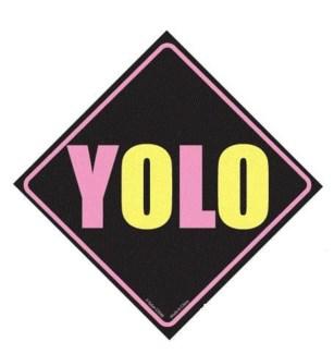 YOLO Window Cling