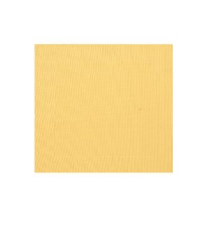 Border Vinyl Placemat Yellow