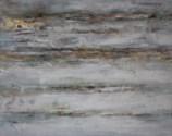 Pistacia vera GALLERY WRAP