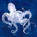 Bleu Kraken GALLERY WRAP