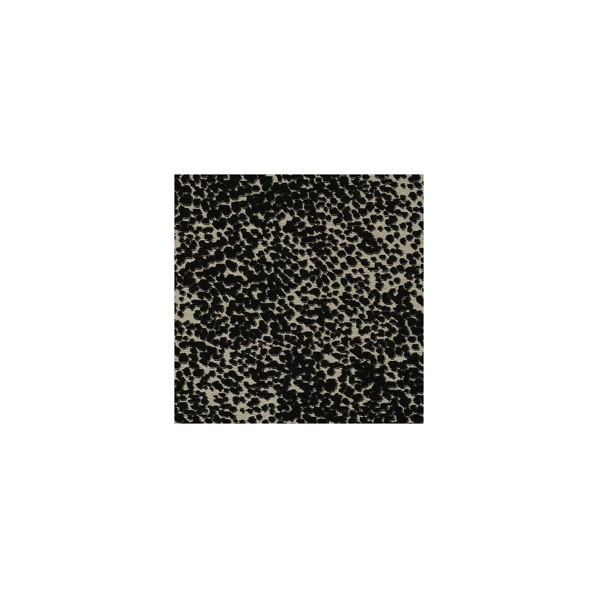 Aneto - Black  - Fabric By the Yard