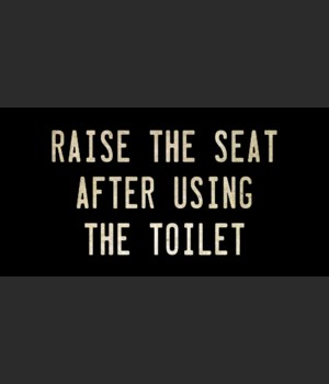 RAISE THE SEAT AFTER USING THE TOILET