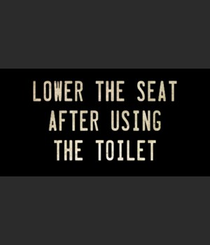 LOWER THE SEAT AFTER USING THE TOILET