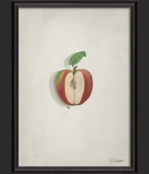 BC Newtons Apple on white