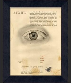 MI Sight