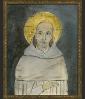 KG Saint Bernard on gray med
