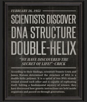 BC DNA Structure black sm