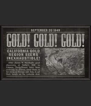 BC California Gold Rush black