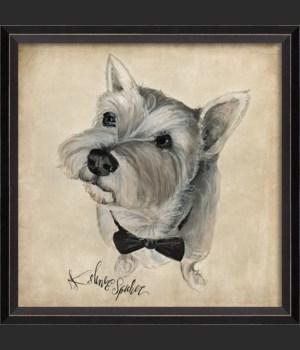 BC Dog Portrait Charlie