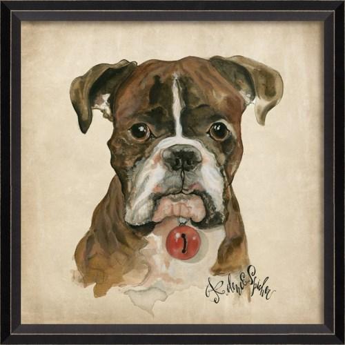 BC Dog Portrait Duke