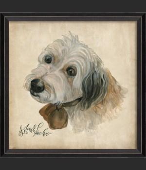 BC Dog Portrait Murphy