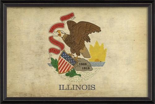BC Illinois State Flag