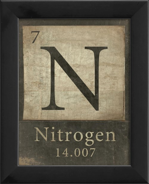 EB 7-N-Nitrogen