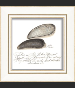 KI Blue Mussel