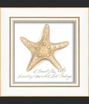 KI Knolby Starfish