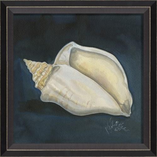 BC Seashell No4