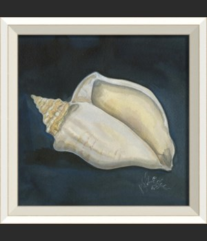 WC Seashell No4