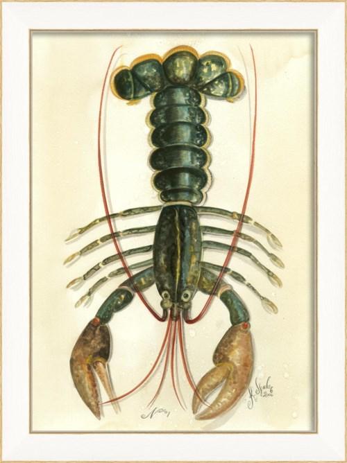 SS Lobster01