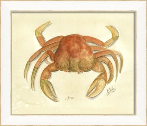 SS Crab03