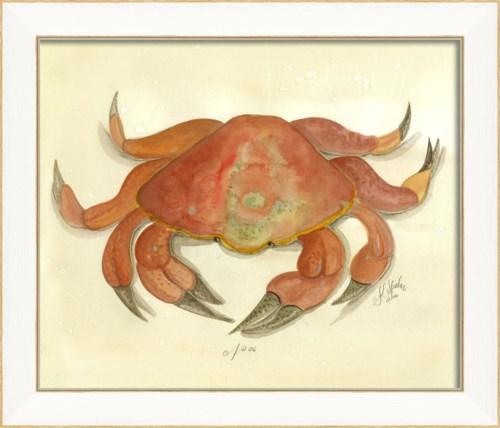 SS Crab06