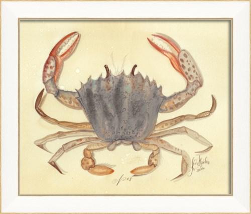 SS Crab08