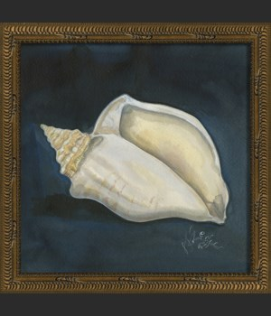 NT Seashell No4