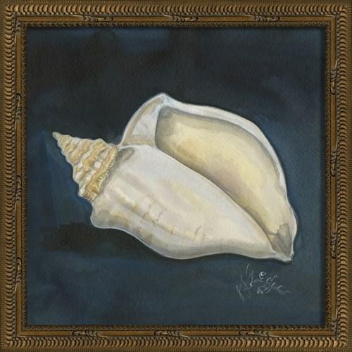 KG Seashell No4