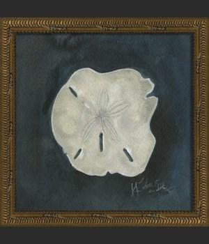 KG Seashell No7
