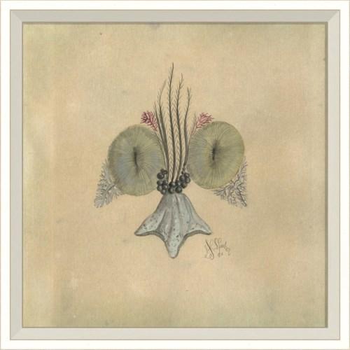 WC Seashell Fleur de Lis 3